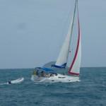 Caribbean 2010-11 098